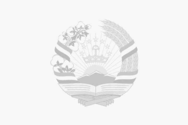 «Истиқлолияти давлатӣ – дарки   масъулияти ватандорӣ»